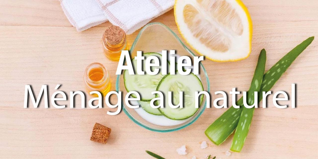 ATELIER DE FABRICATION DE PRODUITS MENAGERS NATURELS